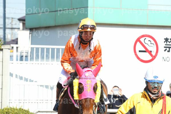 JRA16年ぶり女性ジョッキー藤田菜七子騎手、川崎競馬場でデビュー